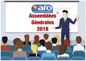 Assemblées Générales AFO 2018 @ Lyon Marriott  | Lyon | Auvergne-Rhône-Alpes | France