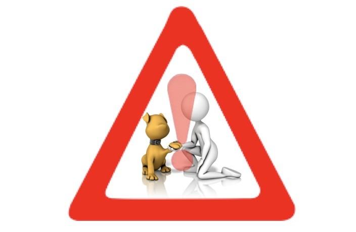Pratique illégale de l'ostéopathie animale
